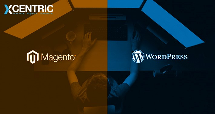 Magento Vs. WordPress; What's BEST for your Business