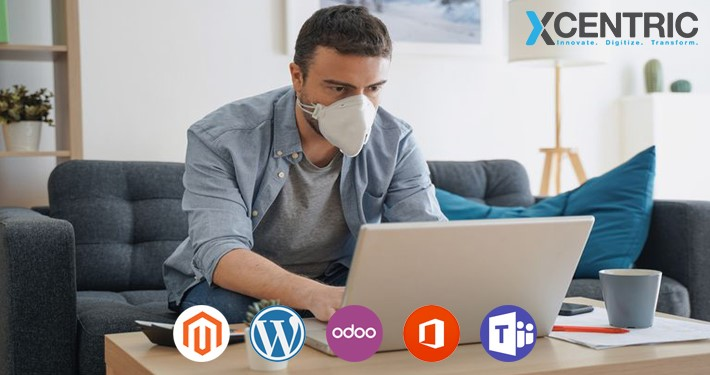 Why Small Businesses need Magento, WordPress, Odoo, Microsoft Office, and Teams post-COVID